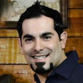 Ing. David Alanís